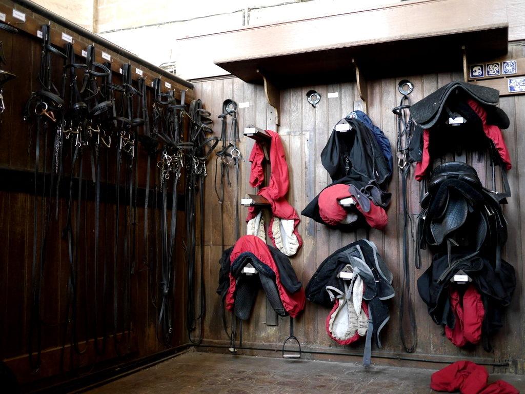 海外ツーリング フランス パリ オートバイレンタル シャンティイ城 コンデ美術館 牡蠣の昼食 大厩舎  厩舎として今でも使われている@ Le musée du Cheval
