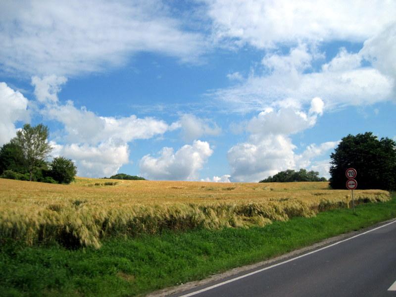 海外ツーリング ドイツ 旧東ドイツ オートバイレンタル デッサウ バウハウス デッサウ校 ハウス アム ホルン ニーチェ アルヒーフ  麦畑を横に@Saale-Unstrut