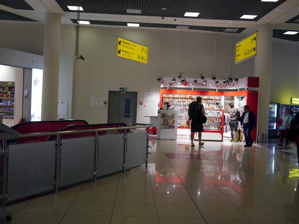 大空港の乗り継ぎ(トランジット)のミスとロストバゲージの恐怖 ターミナルEが終わりターミナルFに向かうにはエスカレーターで1階降りる@シェレメーチエヴォ空港