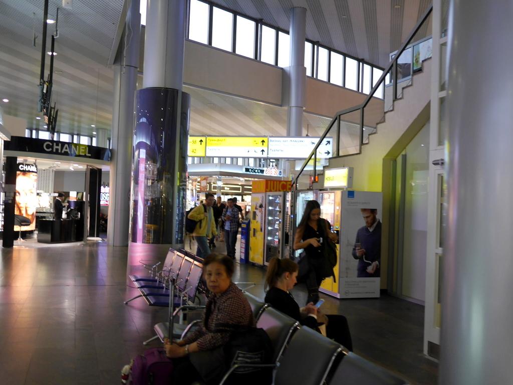 大空港の乗り継ぎ(トランジット)のミスとロストバゲージの恐怖 通路を抜けるとターミナルFの入り口@シェレメーチエヴォ空港