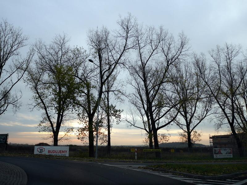 グダニスク グダンスク ダンツィヒ ポーランド ドライブ 夜明けの道を走る