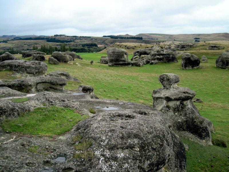 海外ツーリング ニュージーランド ロード オブ ザ リング オートバイレンタル ナルニア国物語 エレファント ロック 異世界のような景色 @Elephant Rocks