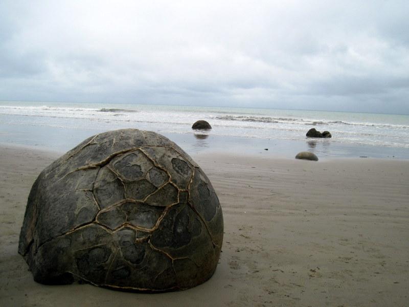 海外ツーリング ニュージーランド ロード オブ ザ リング オートバイレンタル 巨大石 モエラキ ボルダー 甲羅模様の石