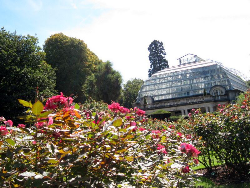 海外ツーリング ニュージーランド ロード オブ ザ リング オートバイレンタル クライストチャーチ カンタベリー博物館 クライストチャーチ植物園 温室 @Botanical Garden Christchurch