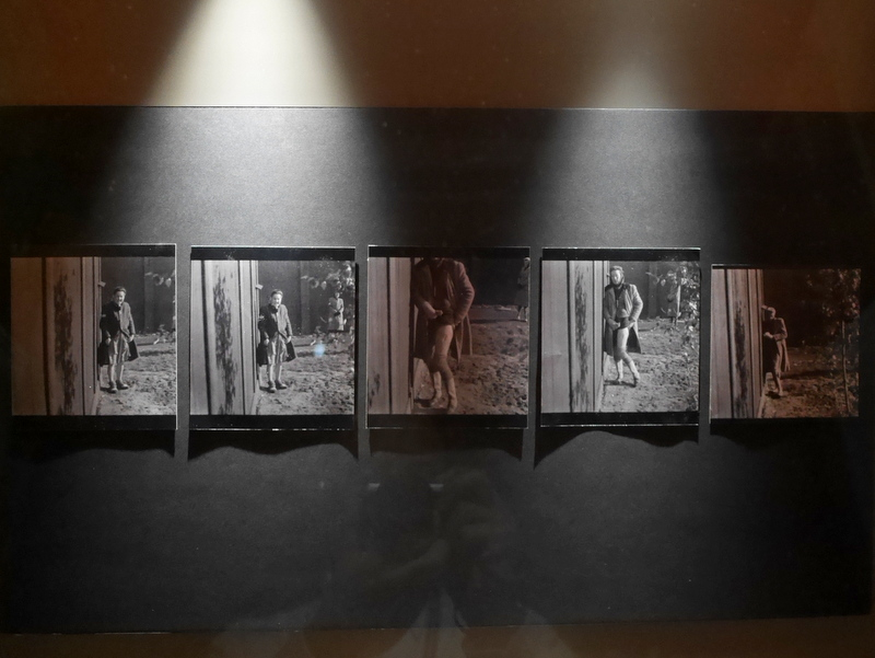 グダニスク グダンスク ダンツィヒ 博物館 戦争 ポーランド 第二次世界大戦博物館 人体実験の証拠写真 @Muzeum II Wojny Światowej w Gdańsku