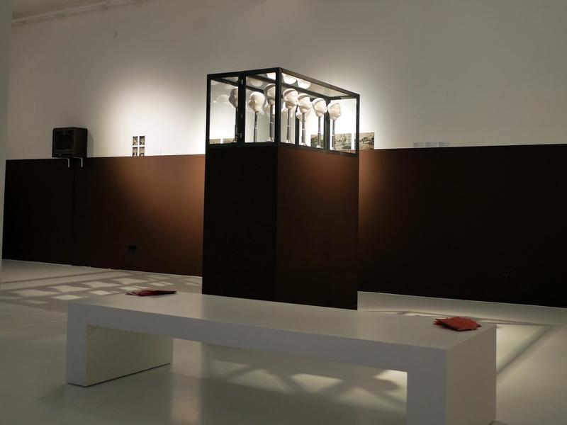 """ヴロツワフ ブレスラウ  美術館 シロンスクの芸術都市 現代美術館 Dorota Nieznalska """"Collection Institut fur Deutsche Ostarbeit"""" @Pawilon Czterech Kopu"""
