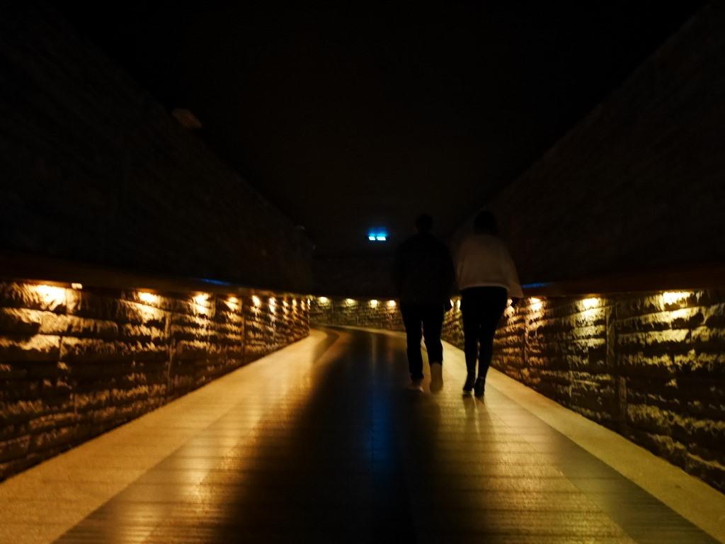 ヴロツワフ ブレスラウ  美術館 シロンスクの芸術都市 パノラマ ラツワヴィツカ 暗い螺線の導線 @Panorama Racławicka