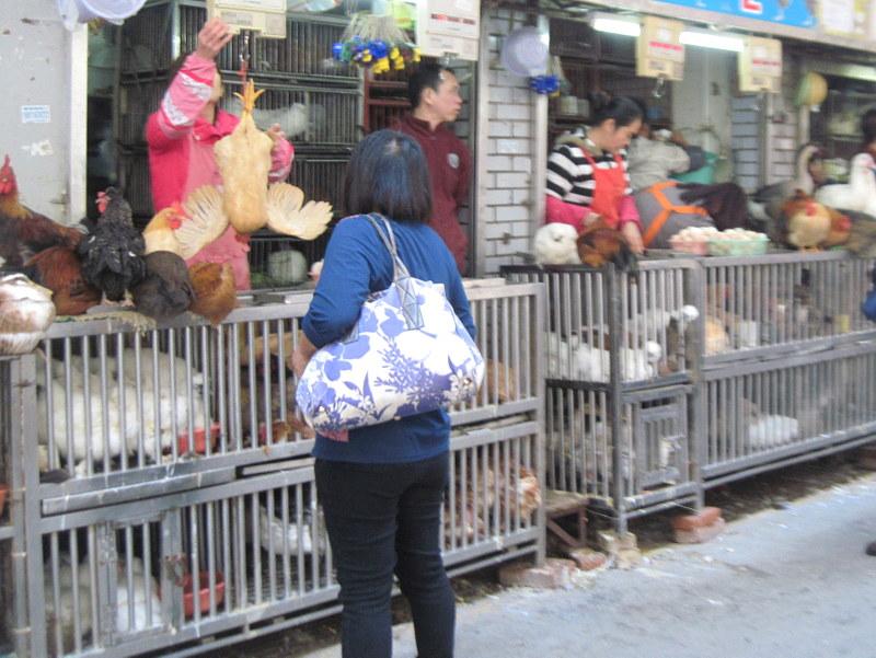 生きたままの売買、究極の新鮮さ @拱北口岸市场 珠海