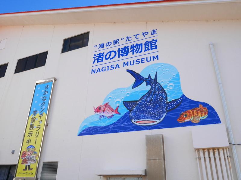 『渚の博物館 外観 @渚の駅たてやま